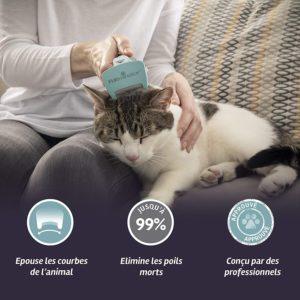 Que faire pour qu'un chat perde moins ses poils : brosse Furminator