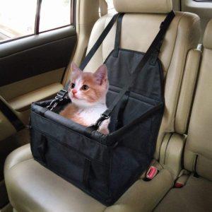 chat en voiture dans un siège housse