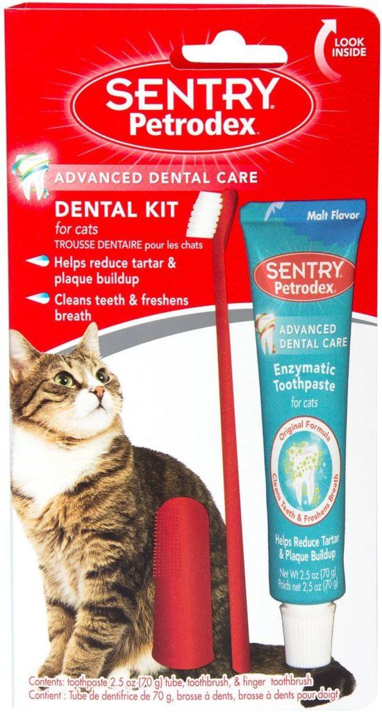 Brosser les dents d'un chat bon dentifrice