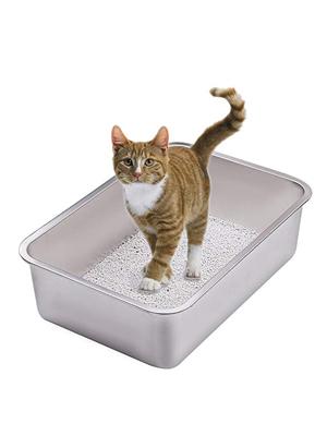 Mon chat n'accepte pas le nouveau chaton - Chat jaloux chaton - Prévoir litières séparées