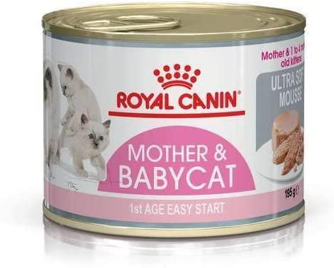 Nourriture pour chaton de 1 mois