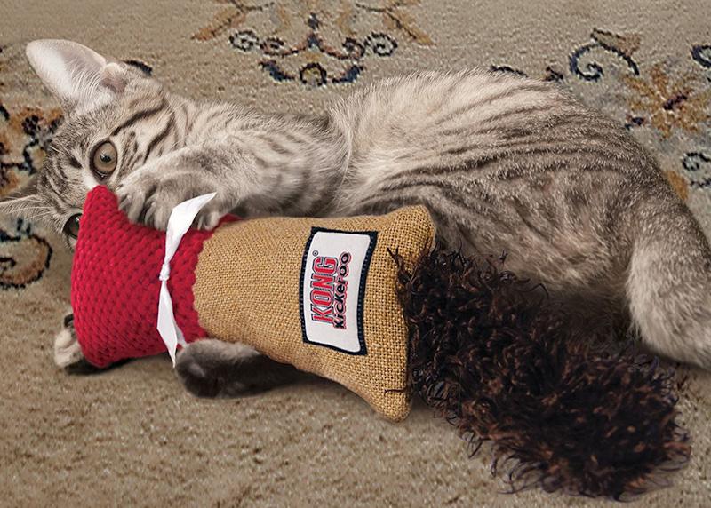 Calmer un chat agressif avec un jouet pour chat plutot que de punir un chat qui attaque