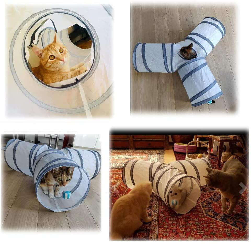 comment occuper son chat avec un tunel