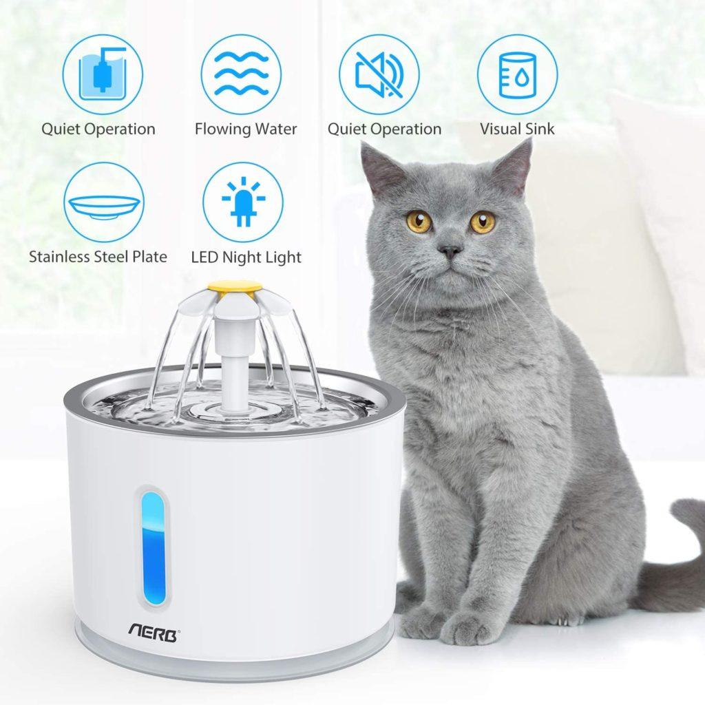 mon chat ne boit pas - Fontaine à eau pour l'inciter à boire