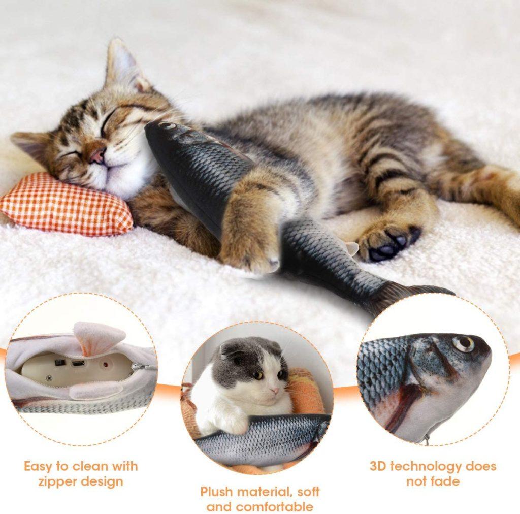 faire jouer son chat avant de l'endormir