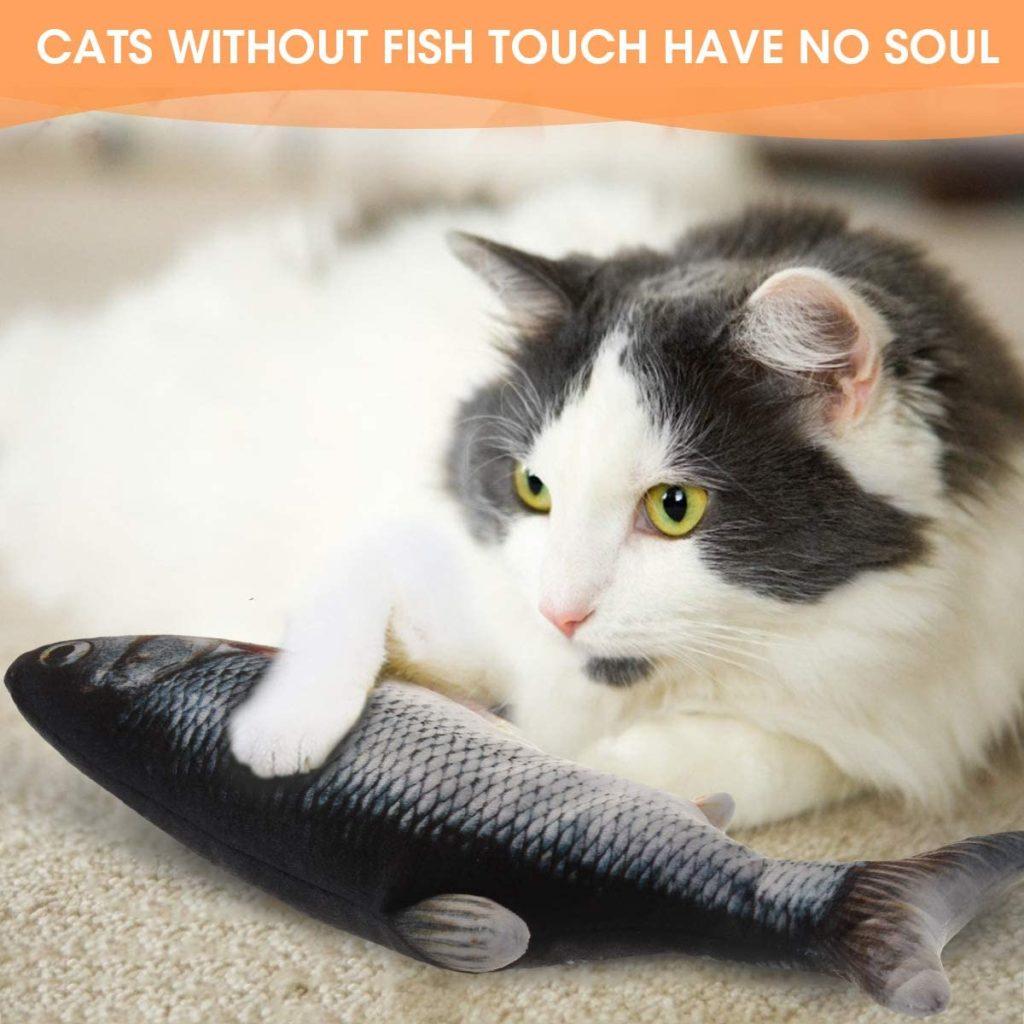 Un chat seul est il malheureux ? jouet contre l'ennui