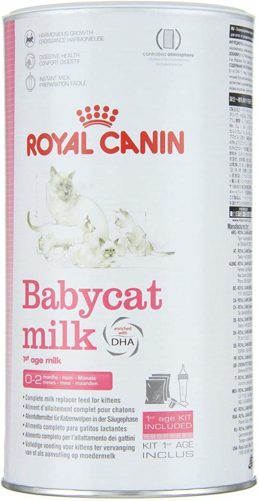 comment nourrir un chaton de 2 semaines