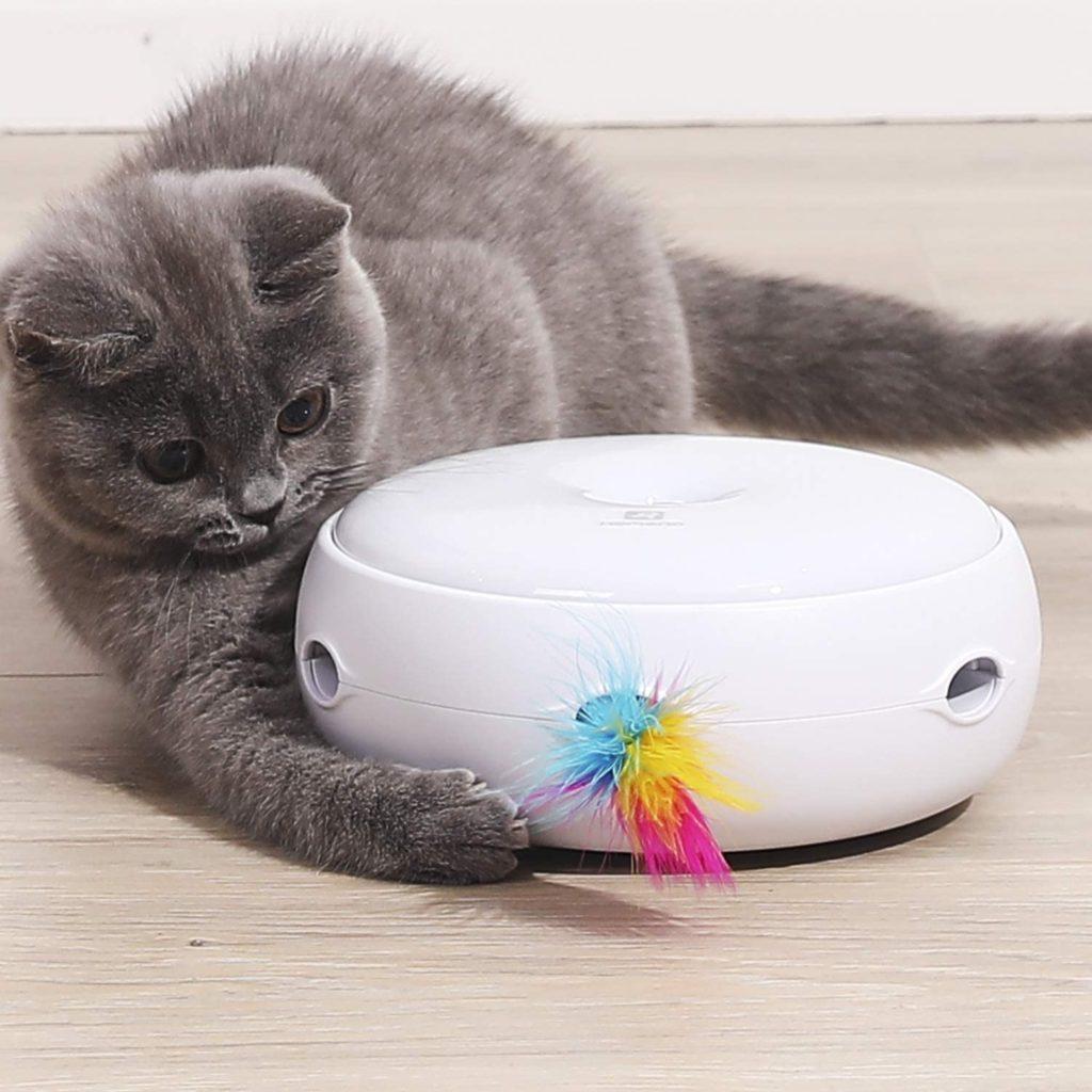 Mon chat me suit partout et me colle jouet interactif