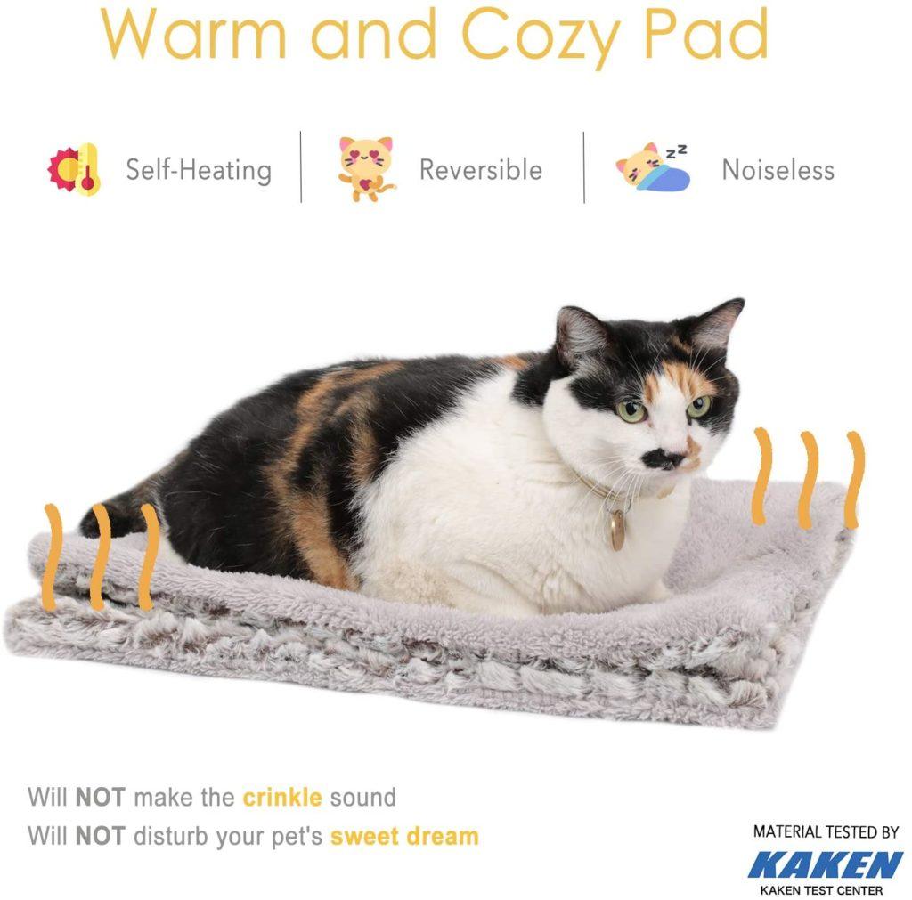 remède maison rhume chat couverture auto chauffante